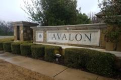 Avalon after